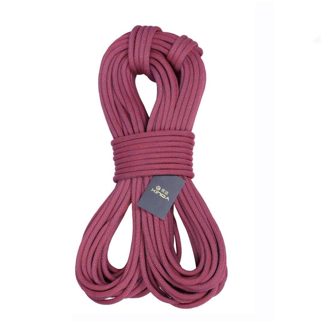 ROBAG 空中作業ロープ 直径16mm 空調 取り付け外装 壁掃除 ロープ保護 安全ロープ 50meters  B07GD2H785