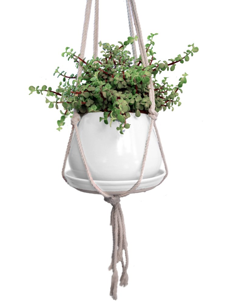 Hanging Stoneware Pottery Planter with Drainage Tray and Braided Rope Hanger (Daisy White)