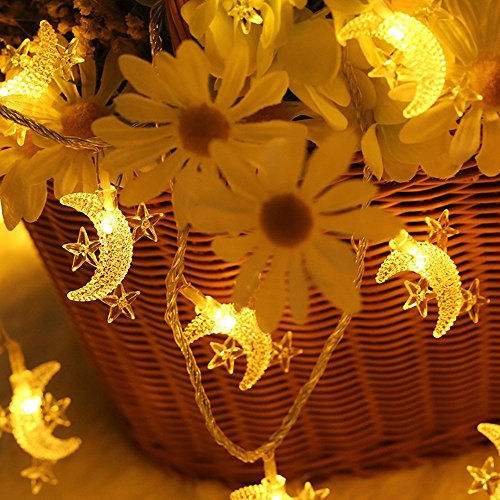 Moon String Lights,Battery Operated Indoor Festoon Lights 30pcs LED Twinkle Lights Warm White for Patio Wedding Bedroom Princess Castle Play Tents Decoration