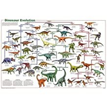 Laminated Dinosaur Evolution Educational Science Chart Poster Collections Laminated Poster Print, 36x24