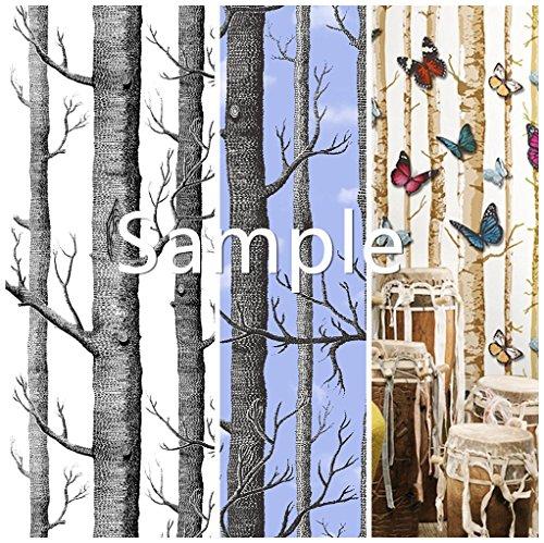 (Blooming Wall: 3091 3092 3351 Birch Tree Wallpaper,Sample)