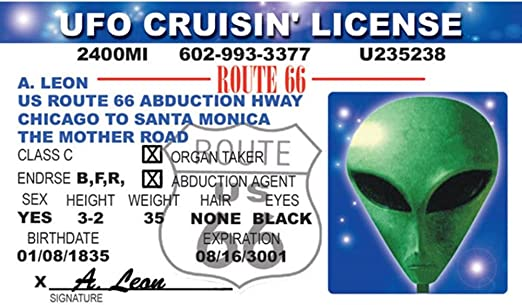 Signs 4 Fun NIID Alien Ufos Drivers License