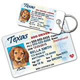 Texas Driver License Custom Dog Tags for Pets (2) and Wallet Card - Personalized Pet ID Tags - Dog Tags For Dogs - Dog ID Tag - Personalized Dog ID Tags - Cat ID Tags - Pet ID Tags For Cats