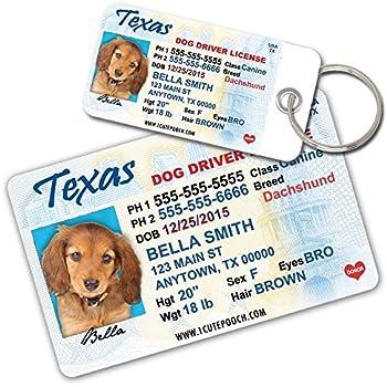 Amazon.com : Texas Driver License Custom Dog Tags for Pets ...