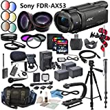 Professional Ultra HD 4K Camcorder Bundle - Sony FDR AX53 Camcorder: Includes Wireless Lapel & Handheld Microphone, LED Video Light, HD Lenses and more...