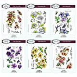 Creative Expressions A5 Clear Stamp Set - Complete Floral Collection