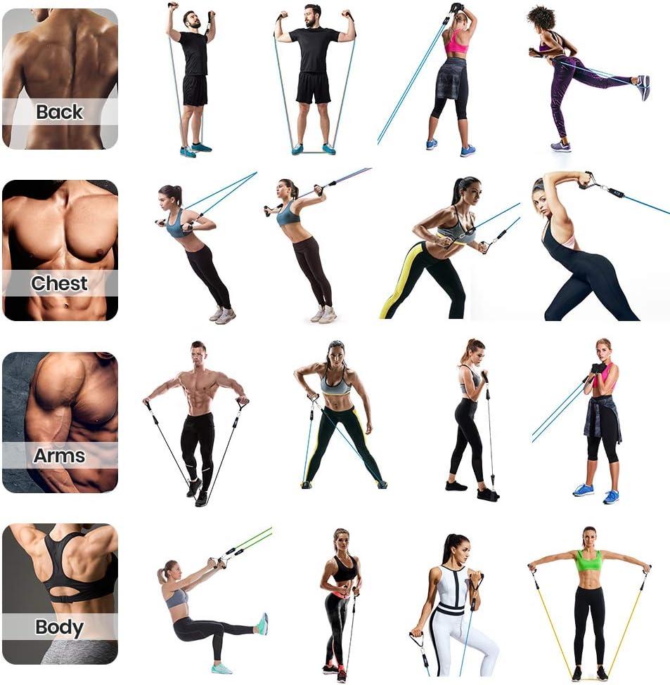 Newdora Bandas Elásticas Fitness, Entrenamiento Bandas elasticas musculacion, Banda de Resistencia Conjunto de Tubos Ejercicios Cuerda de Resistencia ...