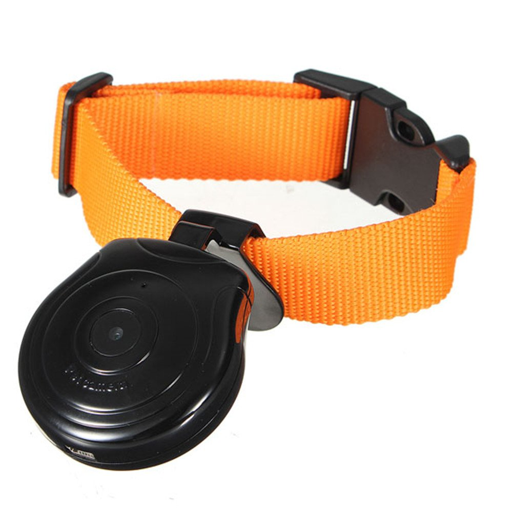 Digital Pet Collar Cam Camera DVR Video Recorder Monitor For Dog Cat Puppy Black