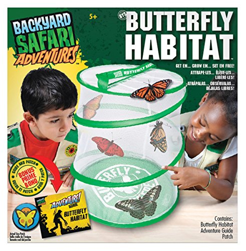 Backyard Safari Butterfly Habitat