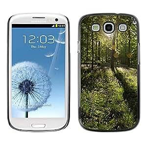 FECELL CITY // Duro Decorativo Carcasa de Teléfono PC Caso Funda / Hard Case Cover forSamsung Galaxy S3 // Forrest Sun