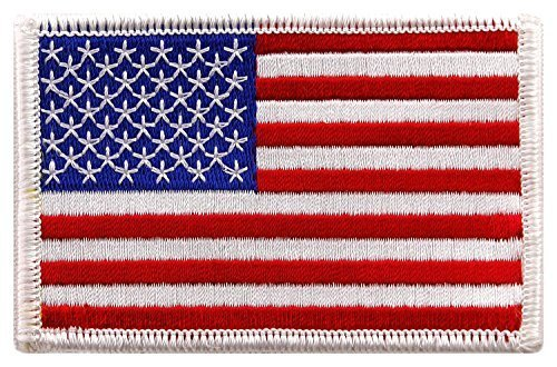 (USA US American Flag Logo Embroidered Patch Sew on Iron On Applique 3.4