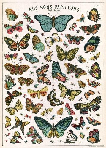 Cavallini Decorative Paper - Nos Bons Papillons 20