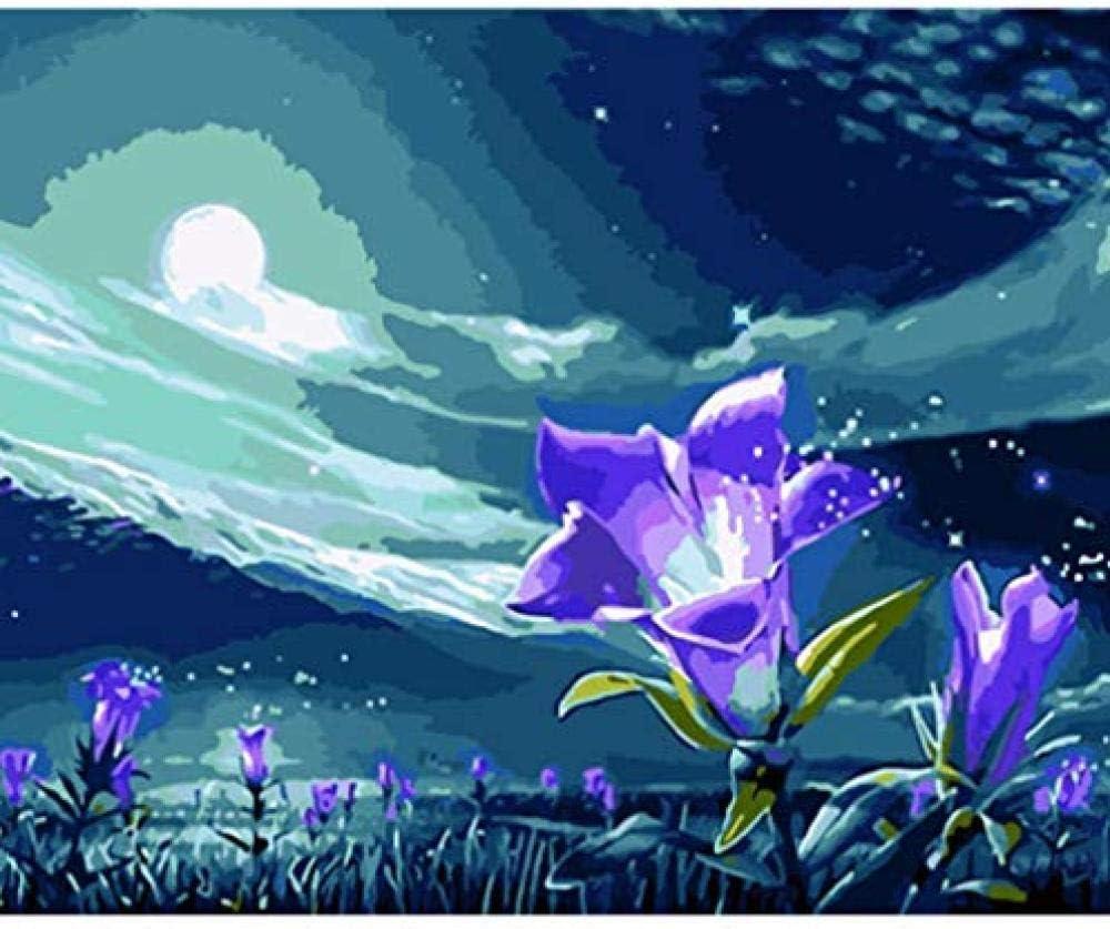 Pintura por números Lienzo Decoración para el hogar Cuadro al óleo Violeta bajo la luz de la luna Flor Pintado a mano Arte Regalo Dibujo Recuerdo Doodle Niños Adultos Juego-40x50cm