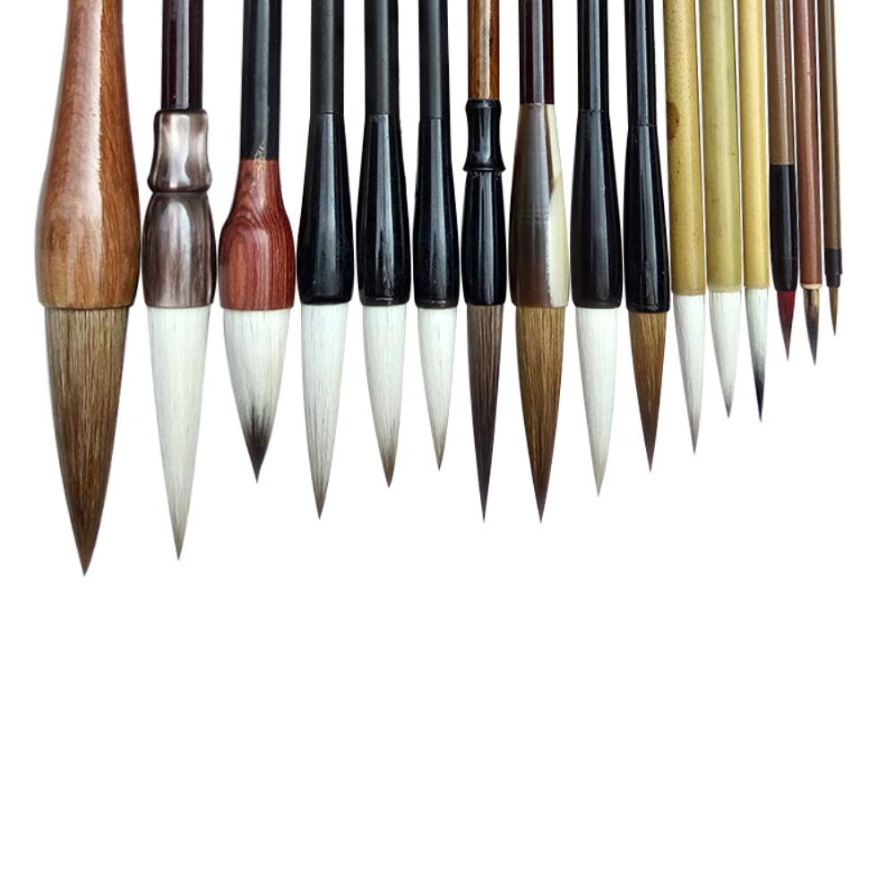 Uigerl Professional Chinese Calligraphy Brushes Set Sumi Drawing Painting Art Brush Pen for Beginner/ 16 Drawing Brushes Plus