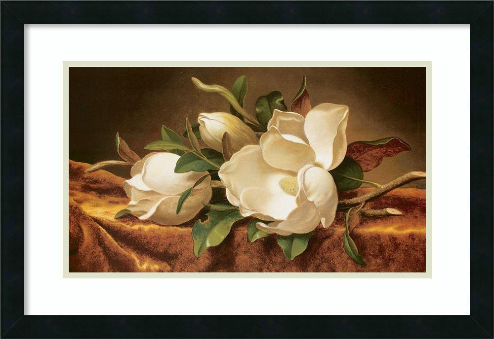 アートフレーム印刷' Magnolias onゴールドベルベット布' by Martin Johnson Heade Size: 26 x 18 (Approx), Matted ブラウン 1643716 Size: 26 x 18 (Approx), Matted Mezzanotte Black,mat:smooth Bright White B0134MHVDO