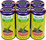 Organic Green Tea, 20 Bag Canister, Pack of 6 For Sale