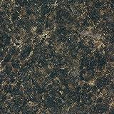 Formica Brand Laminate 036921246708000 Labrador Granite Laminate, Labrador Granite Etchings