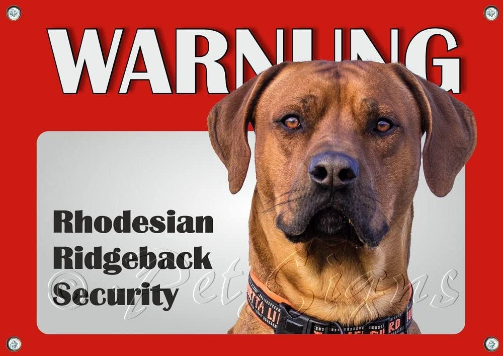Rhodesian Ridgeback uv-best/ändiges Metall Warnschild Petsigns Hundeschild
