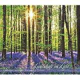 Landschaft im Licht 2018 - Landscape and Light - Bildkalender (33,5 x 29) - Landschaftskalender