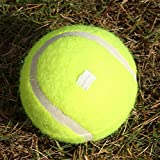 Suruc - Tennis Trainer Self-Study Rebound Ball with Baseboard Exercise Sports Sparring Device Tennis Training Equipment