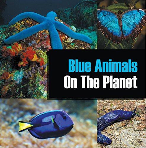 Blue Animals On The Planet: Animal Encyclopedia for Kids (Colorful Animals on the Planet Book 1) Blue Ribbon Cool Shark