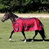 Shires Stormcheeta 200G Turnout Blanket (72)