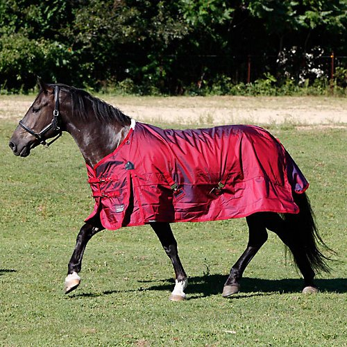 Shires Stormcheeta 200G Turnout Blanket (72) by Shires