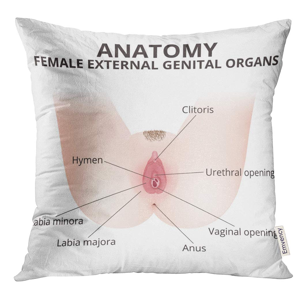Amazon Golee Throw Pillow Cover Hymen The Structure Of Female