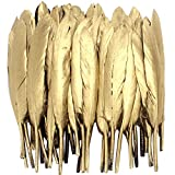 Coceca 72PCS Gold Feathers, 4-6 Inch, for Various Crafts, Birthday Parties, Wedding and Party Dress-ups