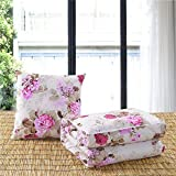 HOMEE Two Multi-Cushion by a Car Pillow Quilt Lovely Cartoon Foldable Pillows Are Air-Conditioning of Offices Were ,50X50, Baseball Xiong,Dance Love,50X50