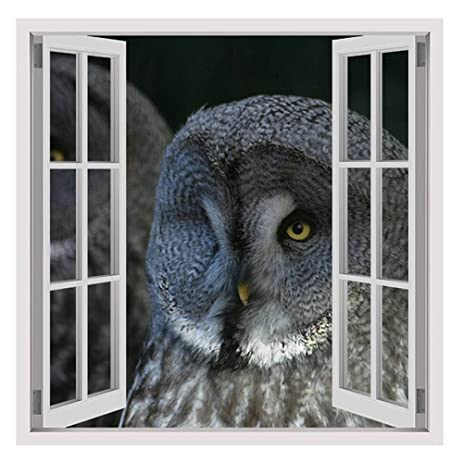 Amazoncom Alonline Art Nature Feather Bird Fake D Window - Bird window stickers amazon