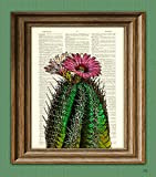 Cactus with flower desert botanical illustration beautifully upcycled dictionary page book art print