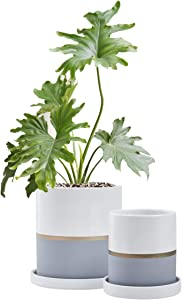 "Fieren White Ceramic Flower Pot Garden Planters 6""/4"" Large Plant Indoor Pot Containers with White Texture and Gold Detail Ceramic Garden Pot with Tray for Indoor Planter White Planter 6""&4""Gray&White"
