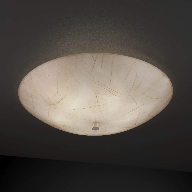 Amazon.com: Diseño de la Justicia Grupo 3 frm-9672 – 35-leaf ...