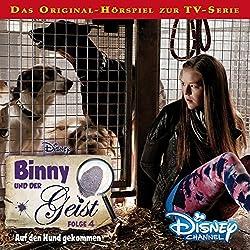 Auf den Hund gekommen (Binny und der Geist 4)
