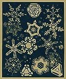 Nature Magazine - A Close up Look at Snowflakes (12x18 Art Print, Wall Decor Travel Poster)