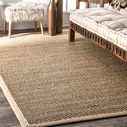 Handmade Natural Fiber Cotton Border Seagrass Beige Rug (6' x 9')