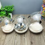 Glass creative children piggy bank adult piggy bank animal piggy bank birthday gift -E