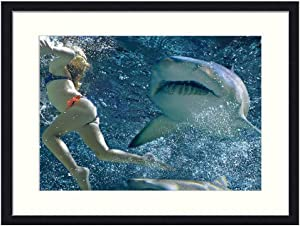 Asommet Shark Attack - Solid Wood Framed Wall Art Print Picture Home Decor (20x14 inches)