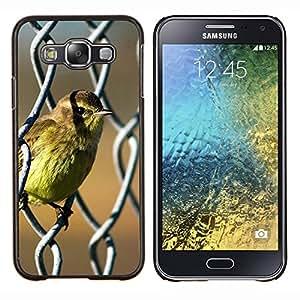 - NATURE SUNSHINE BIRD BABY SPRING CUTE - Caja del tel¨¦fono delgado Guardia Armor- For Samsung Galaxy E5 E500 Devil Case