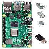 Raspberry Pi 4 with CanaKit Heat Sinks and Micro USB to USB-C Converter (2GB RAM)
