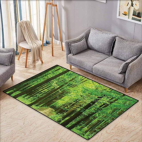- Custom Rug,Farm House Decor Collection,Path in Forest Along Trees Foliage Woodland Landscape Picture Print,Rustic Home Decor,3'11