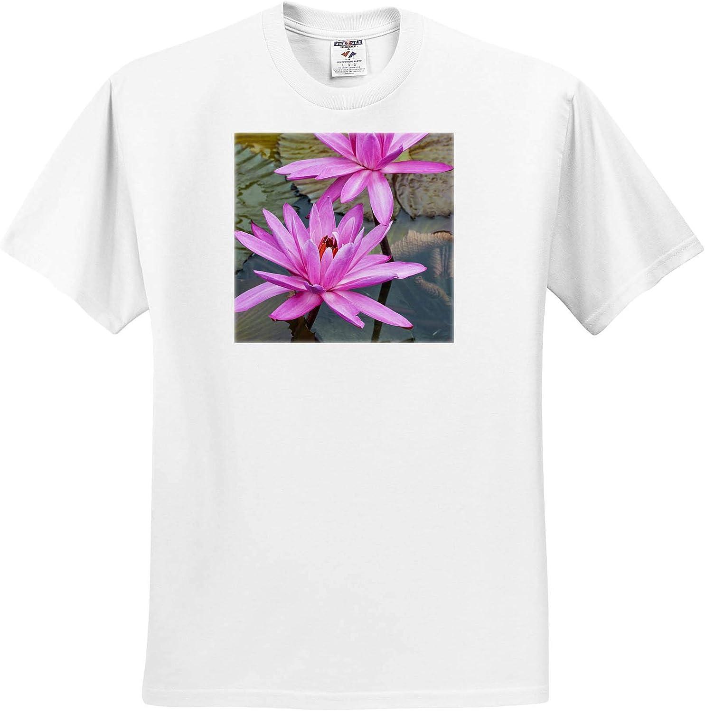 3dRose Water Lily at Nan Lian Garden, Kowloon, Hong Kong, China. - T-Shirts (ts_329477)