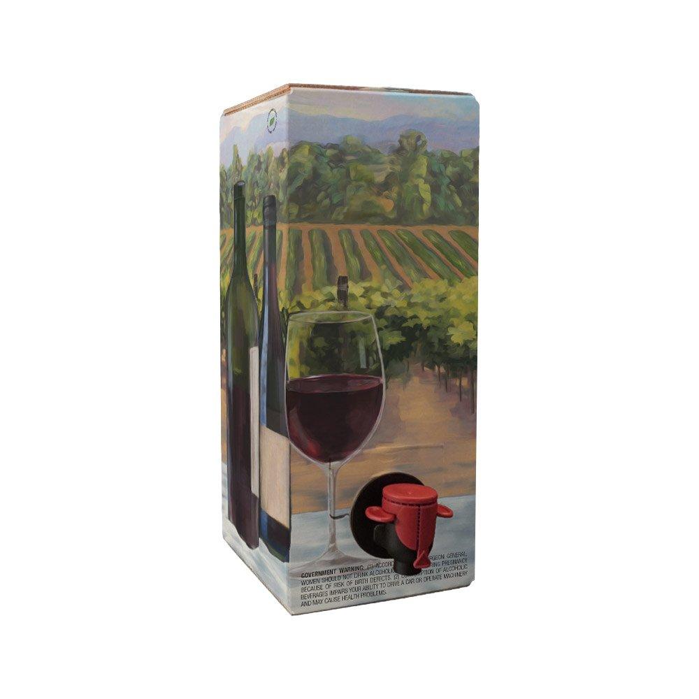 Astropaq - Juego de bolsas de vino tinto en caja [botella de ...