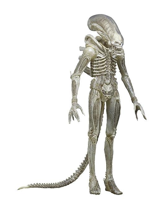 NECA- Traje Concepto Prototipo Translucido, Figura de 56 cm, Escala 1:4, Alien (NEC0NC51626)