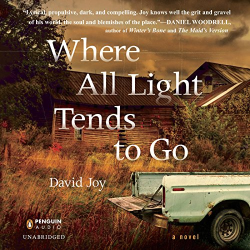 Where All Light Tends to Go Audiobook [Free Download by Trial] thumbnail