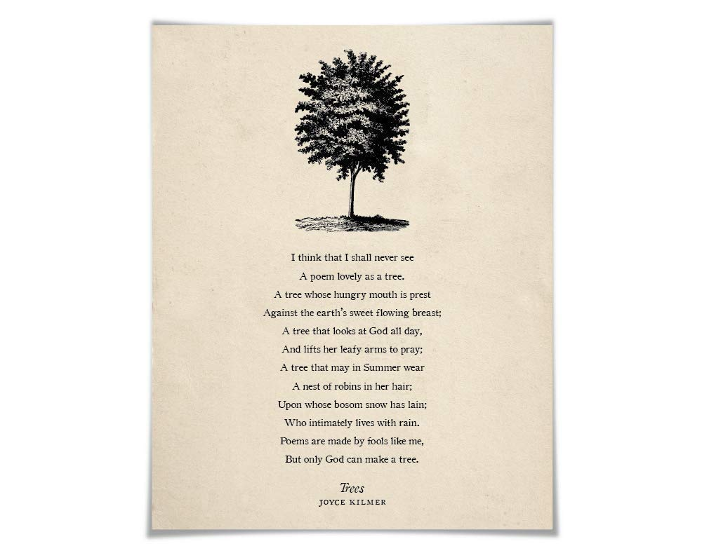Amazon Com Trees By Joyce Kilmer Poetry Art Print 5 Sizes 5 Backgrounds I Think That I Shall Never See Nature Lover Gift Poster Inspirational Handmade Beech trees in frederiksdal near copenhagen by christian ernst bernhard morgenstern. trees by joyce kilmer poetry art print 5 sizes 5 backgrounds i think that i shall never see nature lover gift poster inspirational