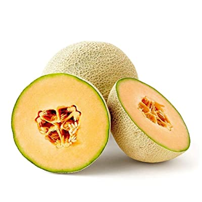 HOTUEEN Annual Bonsai Cantaloupe Melon Seeds Fruit Seeds Fruits : Garden & Outdoor