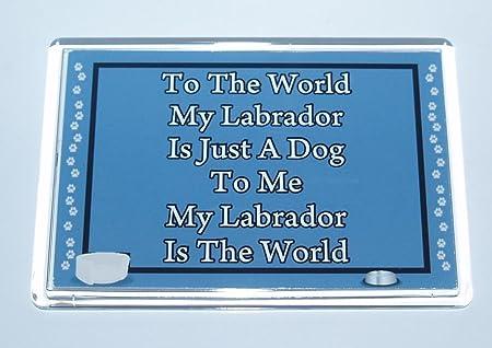Mi Labrador significa el mundo para mí - perro Jumbo imán para ...