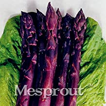 Hot Sale!Four Seasons Purple Asparagus seeds,Delicious jardin vegetable seeds sementes da fruta - 50Seed/Bag,#BOVSOB